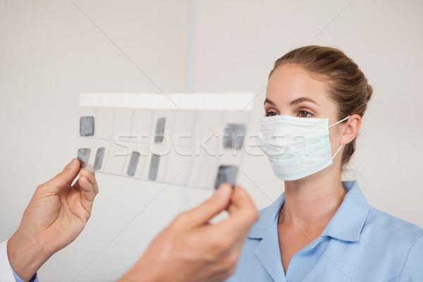 Dentiste assistant étudier dentaires clinique infirmière Photo stock © wavebreak_media