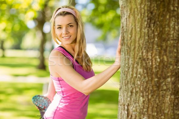 Fitt szőke nő nyújtás fa napos idő egészség Stock fotó © wavebreak_media