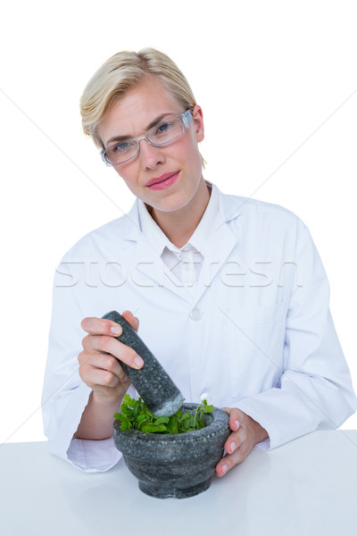 Doctor mixing herbs with mortar and pestle Stock photo © wavebreak_media