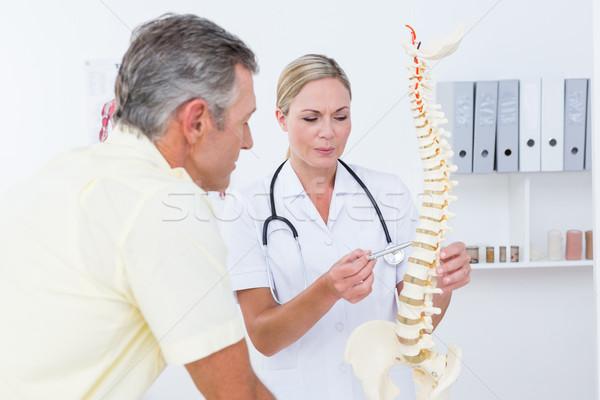 Stock fotó: Orvos · mutat · beteg · gerincoszlop · modell · orvosi