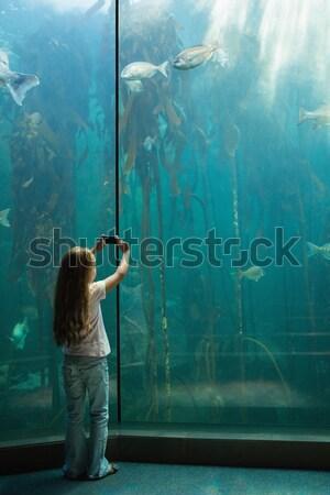 Bambina guardando pesce serbatoio acquario mani Foto d'archivio © wavebreak_media