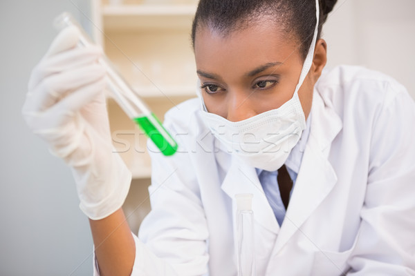 Concentrated scientist analyzing test tube Stock photo © wavebreak_media