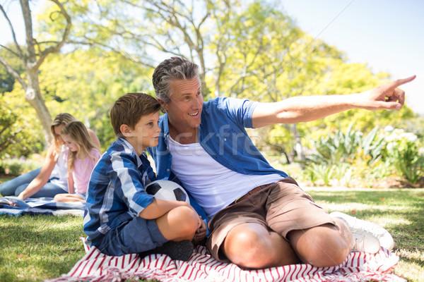 Syn ojca patrząc dystans parku szczęśliwy Zdjęcia stock © wavebreak_media