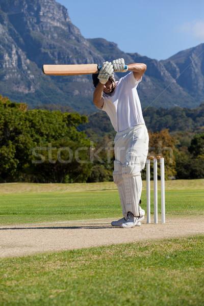 Cricket player playing on field Stock photo © wavebreak_media