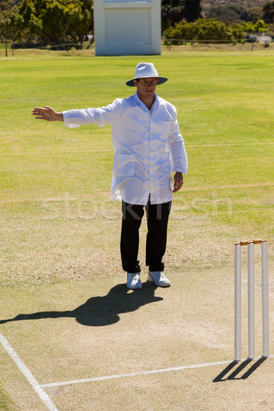 Full length of cricket umpire signalling no ball during match Stock photo © wavebreak_media