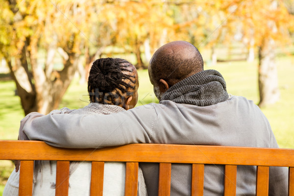 Happy senior couple discussing together on a bench Stock photo © wavebreak_media