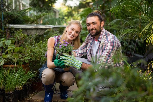 肖像 幸せ 同僚 植物 庭園 ストックフォト © wavebreak_media