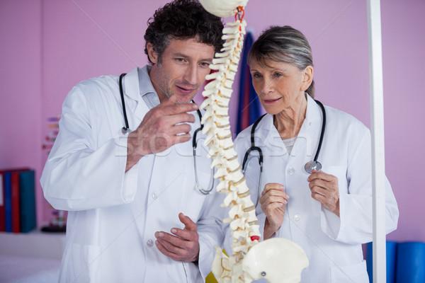 Dos espina modelo clínica mujer Foto stock © wavebreak_media