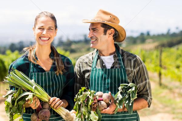 Heureux agriculteur couple légumes locale Photo stock © wavebreak_media