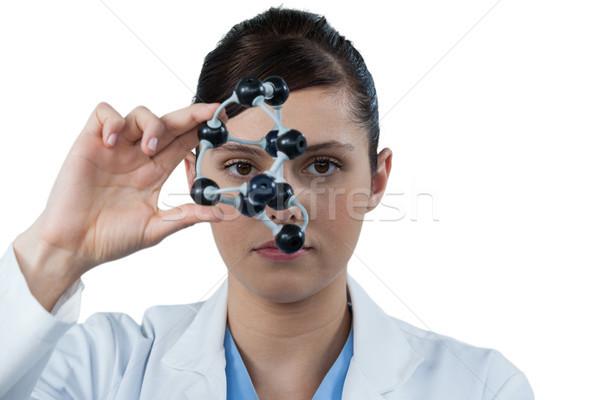Portré női tudós tart molekuláris modell Stock fotó © wavebreak_media