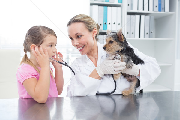 Vet with girl examining puppy Stock photo © wavebreak_media