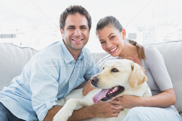 Smiling couple petting their yellow labrador on the couch Stock photo © wavebreak_media