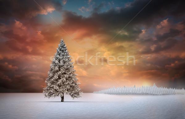 Krajobraz cyfrowo wygenerowany lasu wygaśnięcia Zdjęcia stock © wavebreak_media