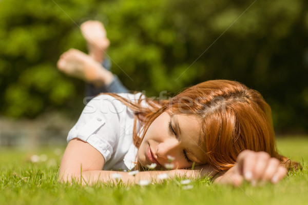 Pretty redhead napping on grass Stock photo © wavebreak_media
