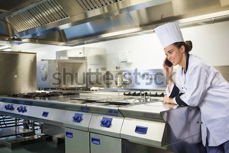 Chefs preparing food in the commercial kitchen Stock photo © wavebreak_media