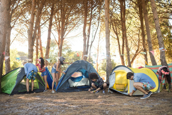 Young friends setting up their tents on field Stock photo © wavebreak_media
