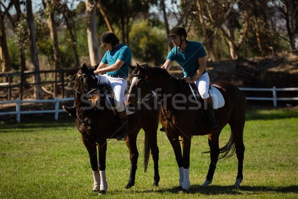 Twee mannelijke paardrijden paard boerderij man Stockfoto © wavebreak_media