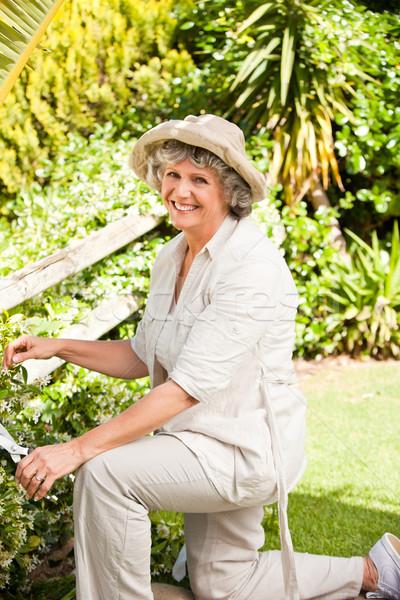 Bastante senior mulher olhando câmera flor Foto stock © wavebreak_media