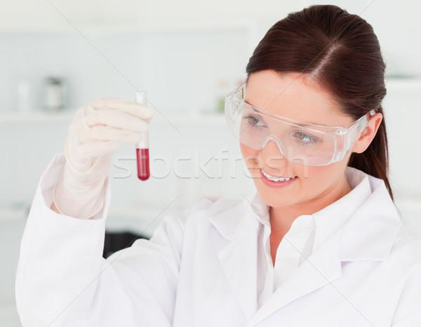 Bastante cientista olhando test tube lab médico Foto stock © wavebreak_media