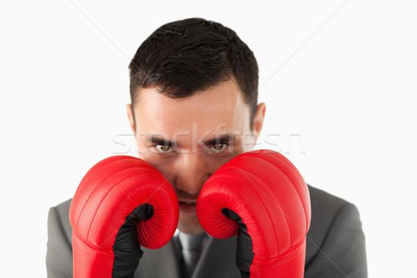 Biznesmen rękawice bokserskie okładka biały Zdjęcia stock © wavebreak_media