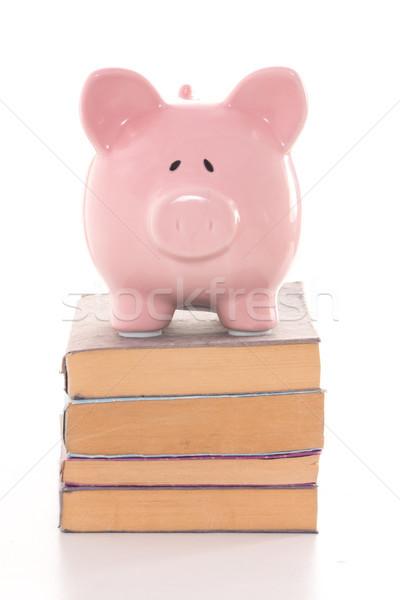Roze spaarvarken permanente boeken witte Stockfoto © wavebreak_media