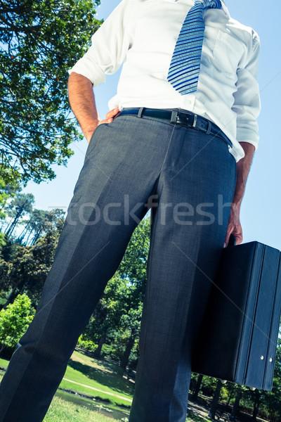 üzletember hordoz aktatáska kéz csípő park Stock fotó © wavebreak_media