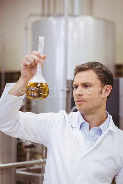 Stock fotó: Fókuszált · tudós · néz · főzőpohár · sör · gyár