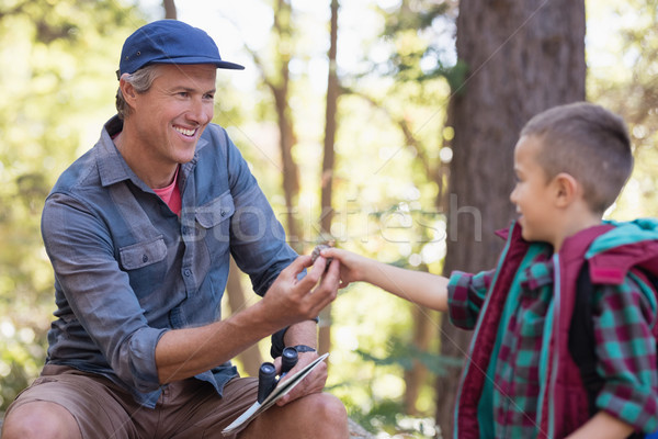 Boy giving pine cone to father in forest Stock photo © wavebreak_media