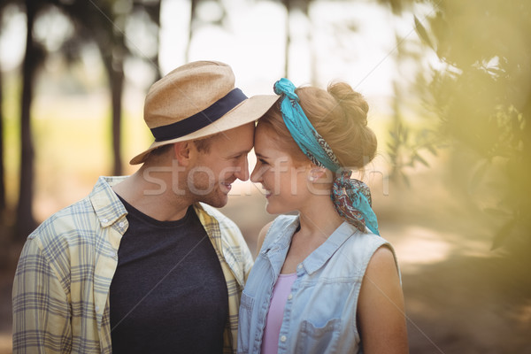 Young couple rubbing noses at olive farm Stock photo © wavebreak_media
