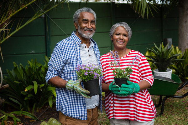 Portrait of smiling senior couple holding plants together Stock photo © wavebreak_media