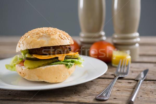 Burger plaka biber shaker duvar Stok fotoğraf © wavebreak_media