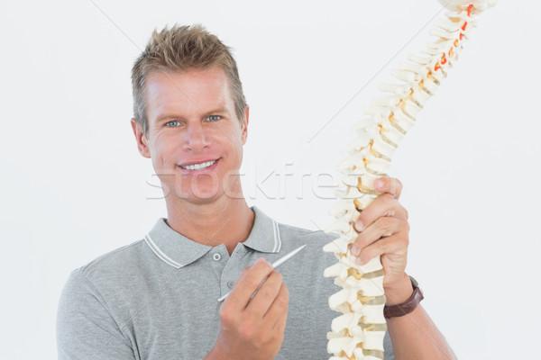 Gülen doktor anatomik omurga beyaz Stok fotoğraf © wavebreak_media
