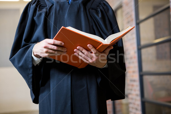 Lawyer holding a law book Stock photo © wavebreak_media