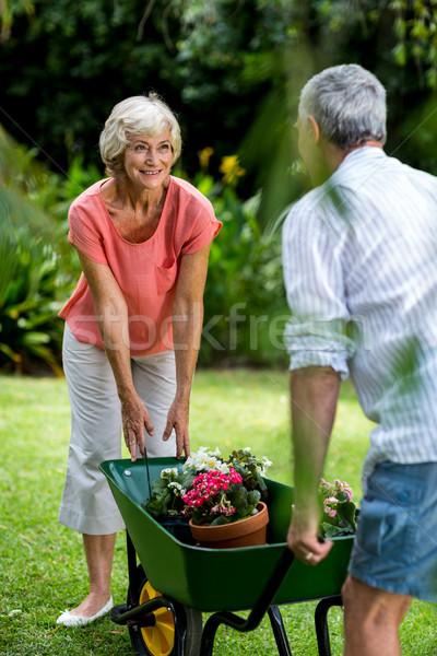 Kruiwagen bloem voortvarend man ouderen Stockfoto © wavebreak_media