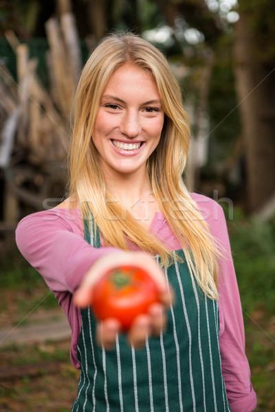 Portrait of happy gardener offering fresh tomato at garden Stock photo © wavebreak_media