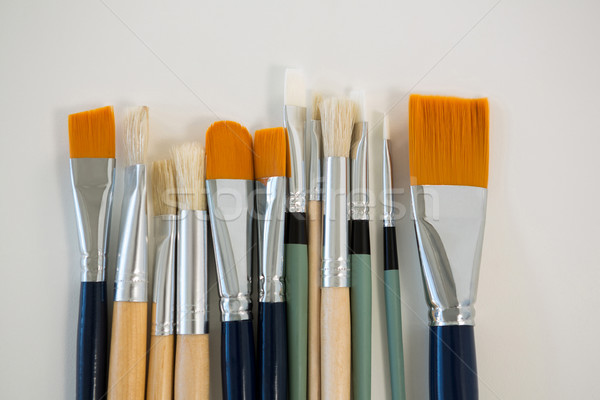 Various paintbrushes arranged in a row Stock photo © wavebreak_media