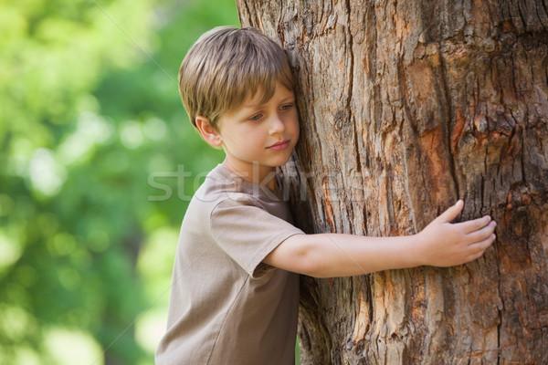 Boy hugging a tree at park Stock photo © wavebreak_media