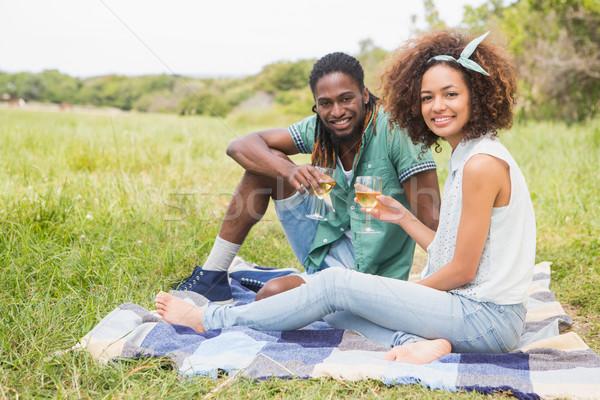 Piquenique potável vinho grama Foto stock © wavebreak_media