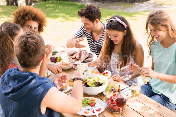 Szczęśliwy znajomych parku obiad kobieta Zdjęcia stock © wavebreak_media