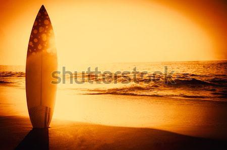 surf board standing on the sand Stock photo © wavebreak_media