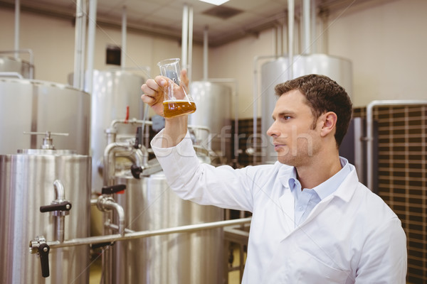 Koncentruje zlewka piwa fabryki człowiek Zdjęcia stock © wavebreak_media