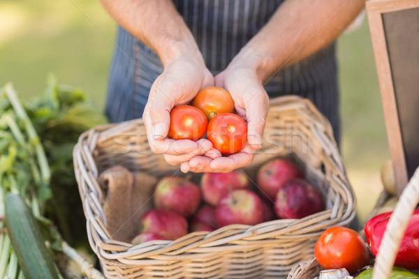 Agriculteur mains trois tomates Photo stock © wavebreak_media
