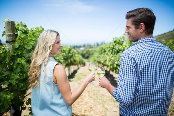 Achteraanzicht glimlachend paar wijnglazen wijngaard Stockfoto © wavebreak_media
