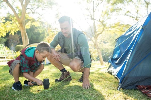 Filho pai para cima tenda homem floresta Foto stock © wavebreak_media