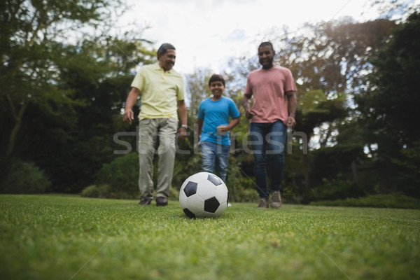 Multi-generation family playing soccer together at park Stock photo © wavebreak_media