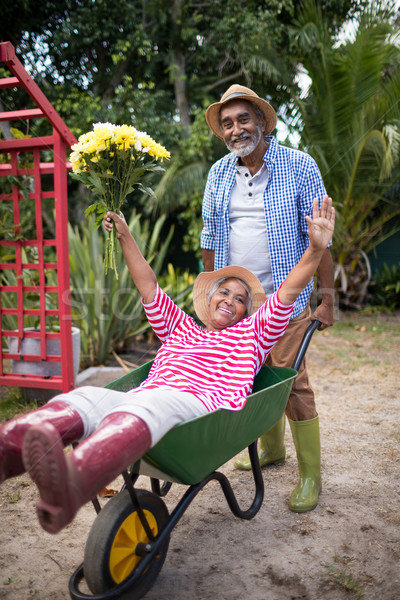 Senior man carrying woman in wheelbarrow Stock photo © wavebreak_media