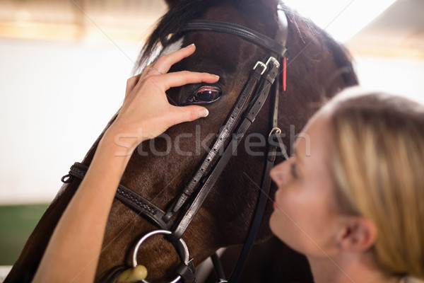 Close up of female vet checking horse eye Stock photo © wavebreak_media