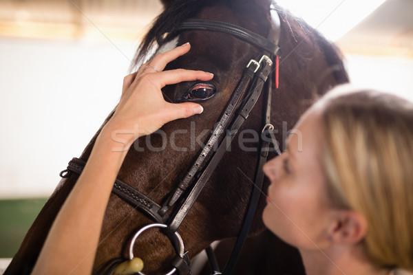 Stock fotó: Közelkép · női · állatorvos · ló · szem · istálló