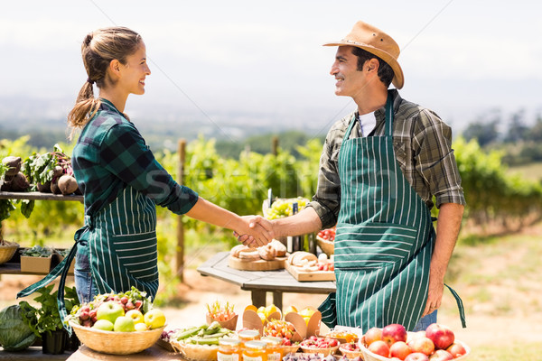 Farmer couple shaking hands with each other Stock photo © wavebreak_media
