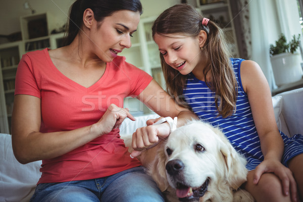 Mother and daughter sitting with pet dog and checking the smart watch Stock photo © wavebreak_media